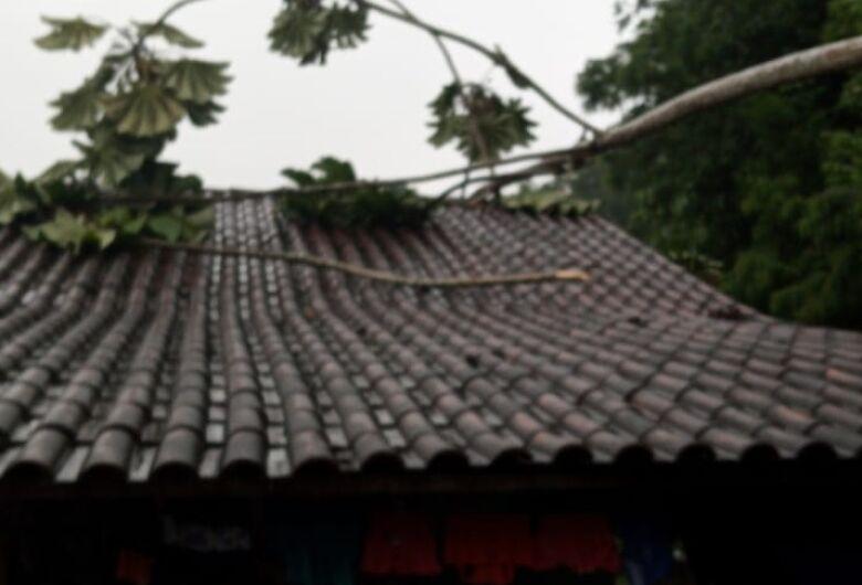 Defesa Civil alerta para risco de deslizamento de terra em Jaraguá