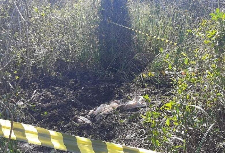 Corpo decapitado é encontrado em Balneário Barra do Sul