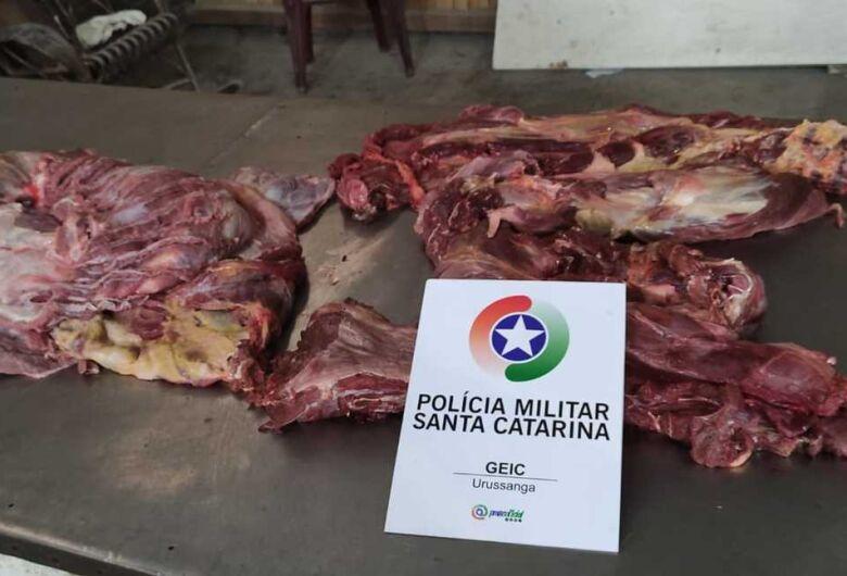 É falsa notícia sobre apreensão de carne de cachorro em SC