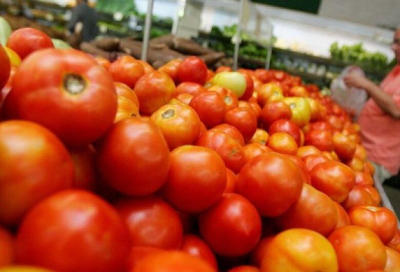 Tomate chega a R$ 9 em alguns estabelecimentos de SC