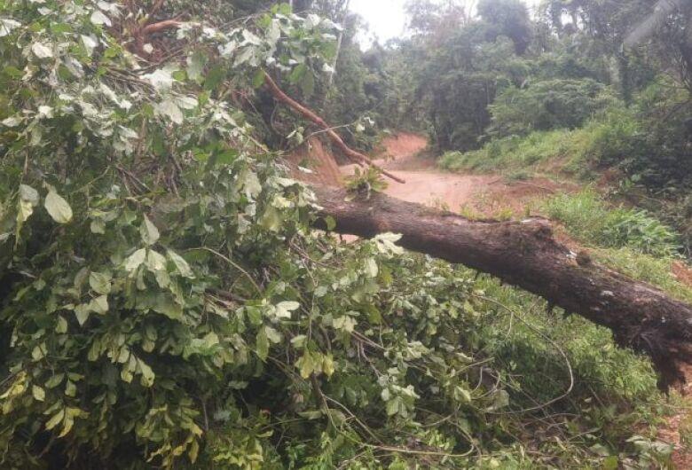 Deslizamento de terra deixa rua parcialmente interditada em Jaraguá do Sul