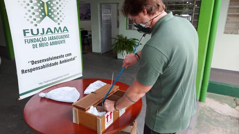 Cobras corais da região seguem para produção de soro antiofídico no Butantan - Crédito: Divulgação Prefeitura de Jaraguá