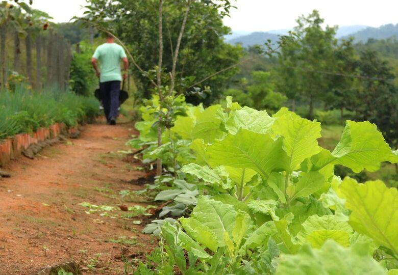 Homem do campo garante direitos e benefícios ao emitir Nota Fiscal - Crédito: Divulgação