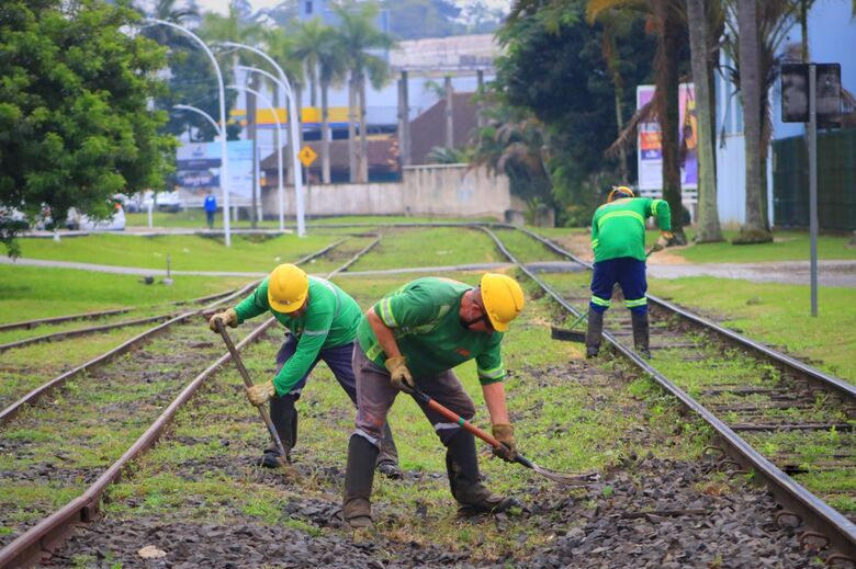 Após notificação, Rumo começa remoção de grãos derramados na linha férrea  - Crédito: Divulgação Prefeitura de Jaraguá