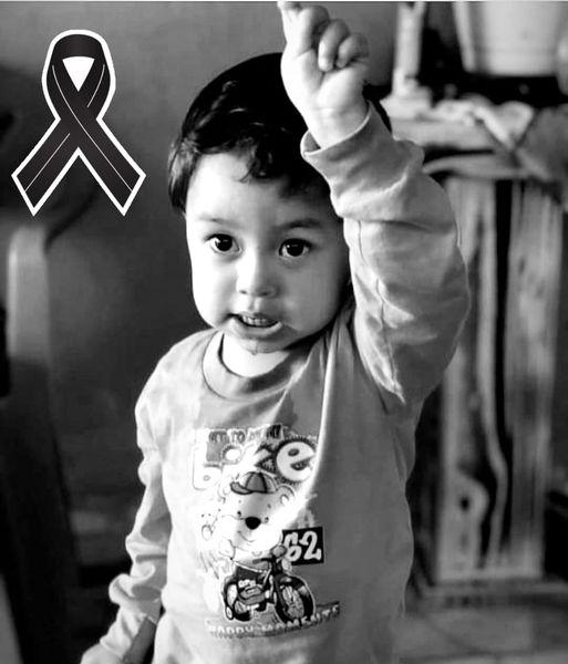 Menino de 2 anos morre após s picado por animal não identificado em SC - Crédito: Divulgação