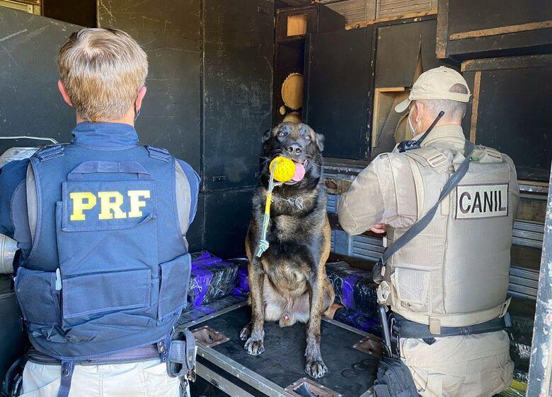 A droga estava escondida em uma carga de som para eventos e foi encontrada pelo cão da PM - Crédito: Divulgação/PRF