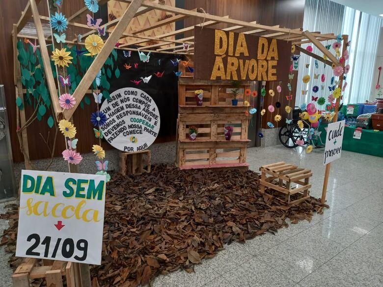 Cooper reforça compromisso ambiental no Dia da Árvore - Crédito: Arquivo / Divulgação