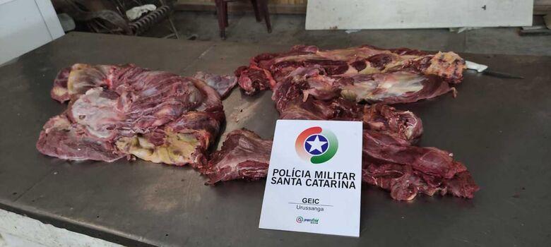 É falsa notícia sobre apreensão de carne de cachorro em SC -