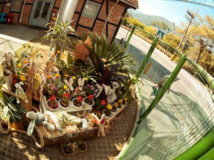 Malwee homenageia a Páscoa com decoração especial durante a Quaresma
