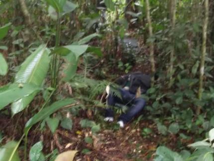 Identificados corpos de menores desaparecidos em Joinville