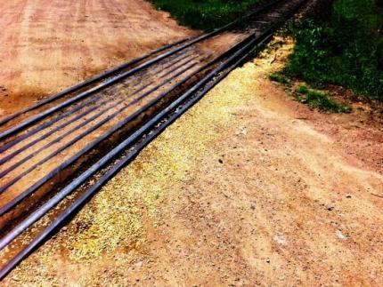 Fujama notifica ALL sobre derramamento de grãos